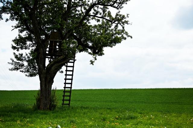 Take a break! (It's ok.) – PhD Life