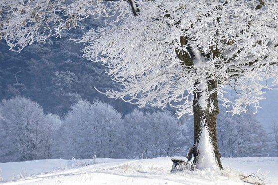 winter-4680354_960_720